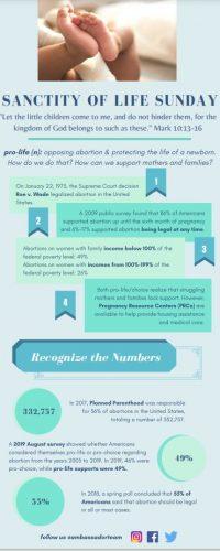 SOL Infographic
