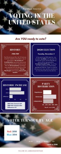 Voting in the United States Infographic (1)
