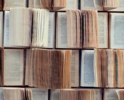 Trivia: ANATOMY OF A BOOK